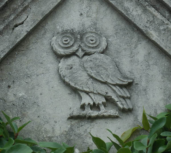 Rice Stone Owl Detail